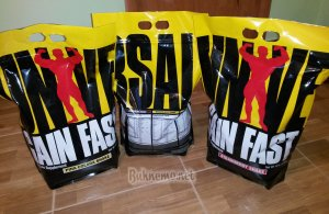 GAIN FAST 3100 от Universal Nutrition